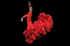 espectaculo-flamenco-madrid-entradas
